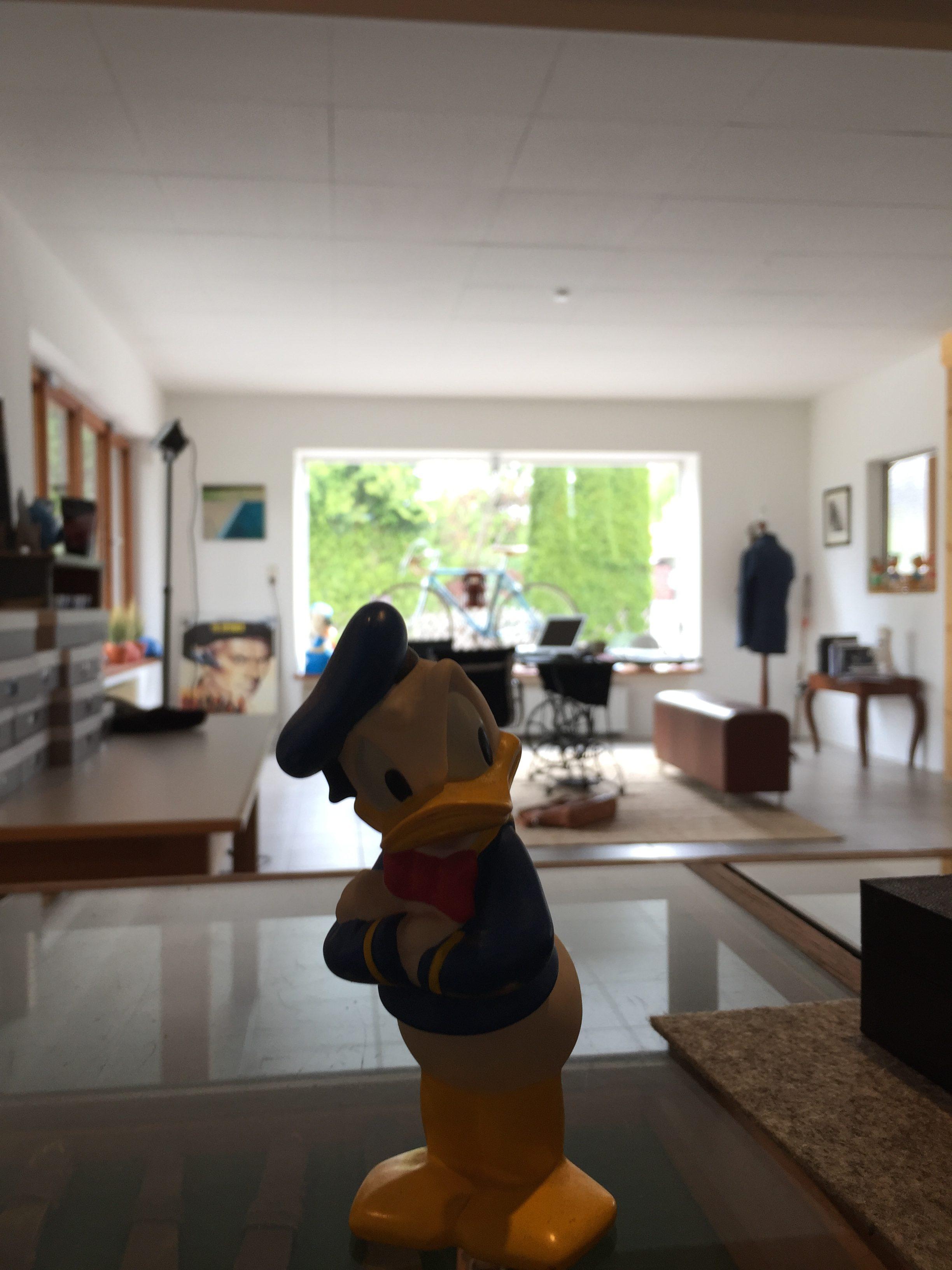 SEESTRASSE7_Donald_Duck